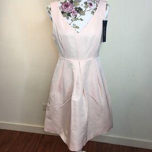 J Crew Pink Pleated Dress NWT
